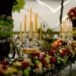 بهترین تشریفات عروسی در شمال تهران